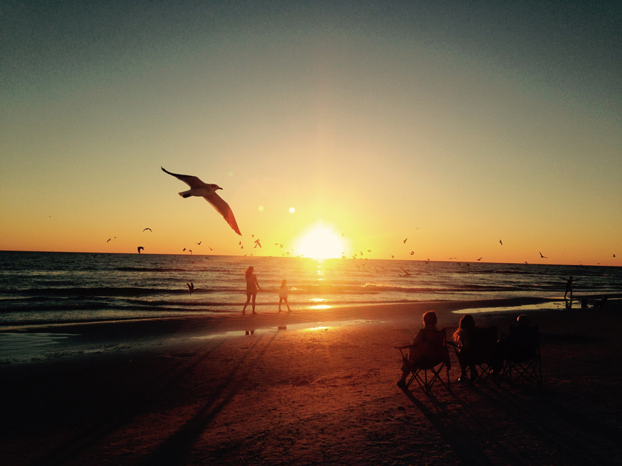 Siesta Key Beach and a moment with an iPhone