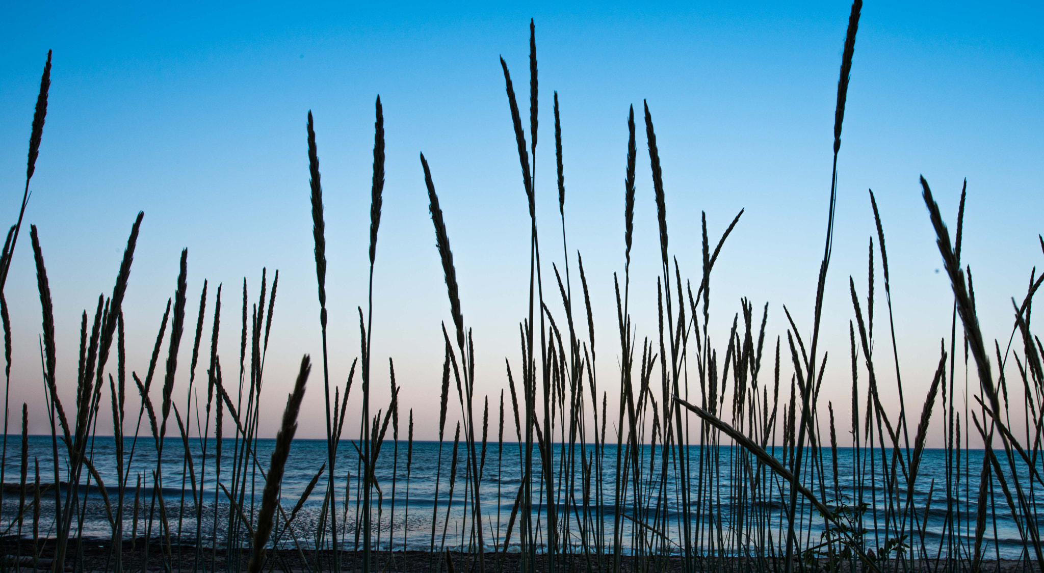 Photograph Lake Michigan evening by Ryan Sheets on 500px