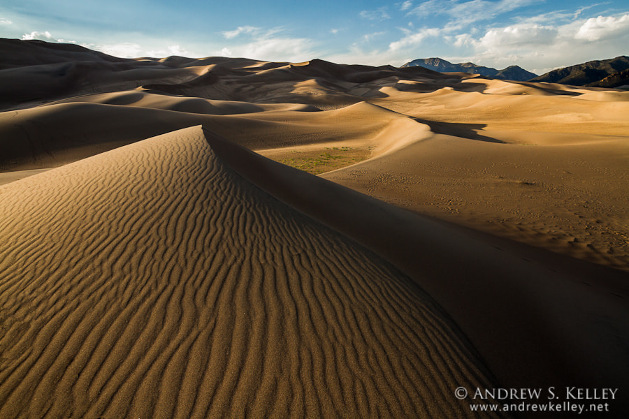Photograph Dunes at Last Light by Andrew Kelley on 500px