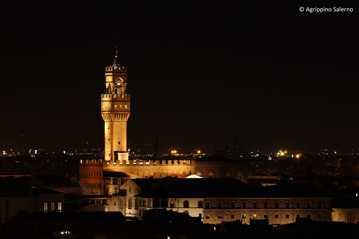 Photograph Palazzo Vecchio from piazzale Michelangelo by Agrippino Salerno on 500px