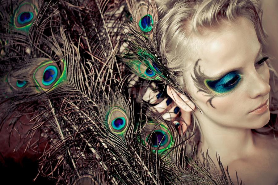Peacock de Jiamin Zhu sur500px.com