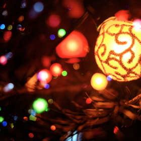Festive Bulb by Greg Beris (GregBeris)) on 500px.com