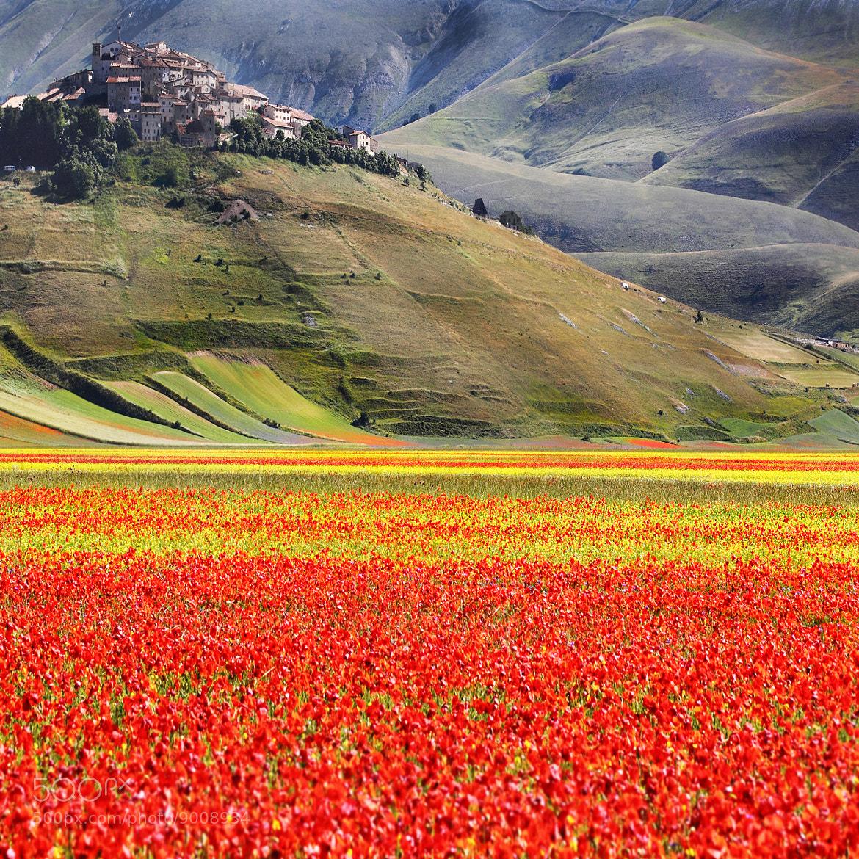 Photograph All the colors of paradise .. by Edmondo Senatore on 500px