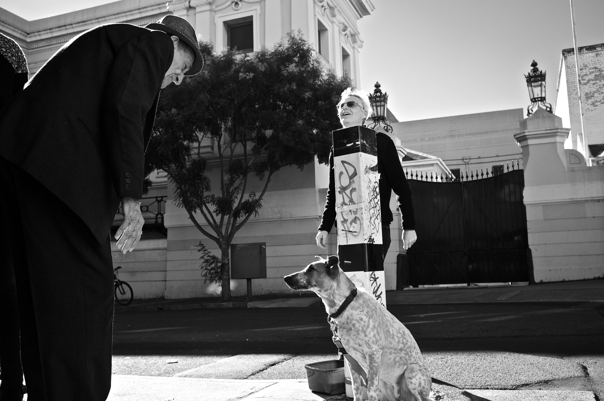 Photograph Man, Dog and a Man by Scott Kim on 500px