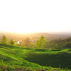 Постер, плакат: Nature hill scenics in Gloucester UK