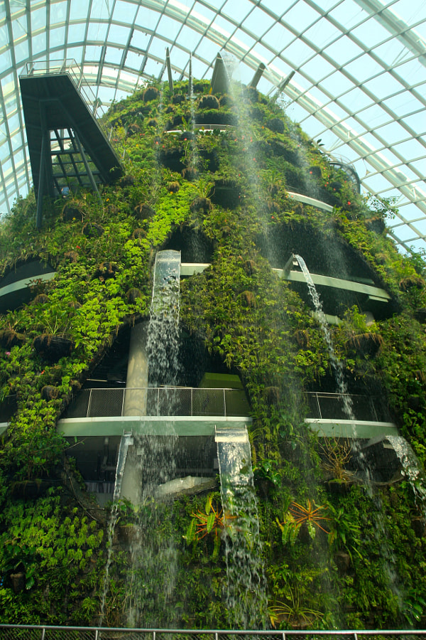 The Waterfall of Cloud Forest