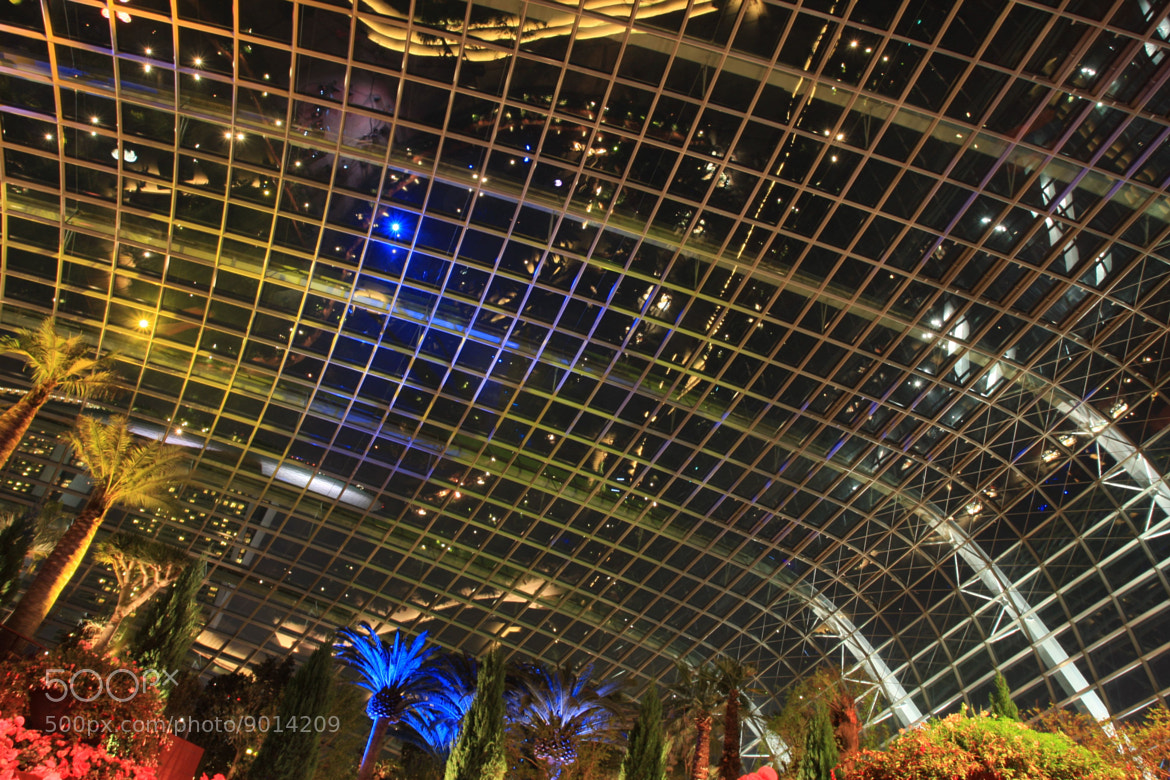 Photograph Starry Starry Night Under the Flower Dome by GengHui Tan on 500px