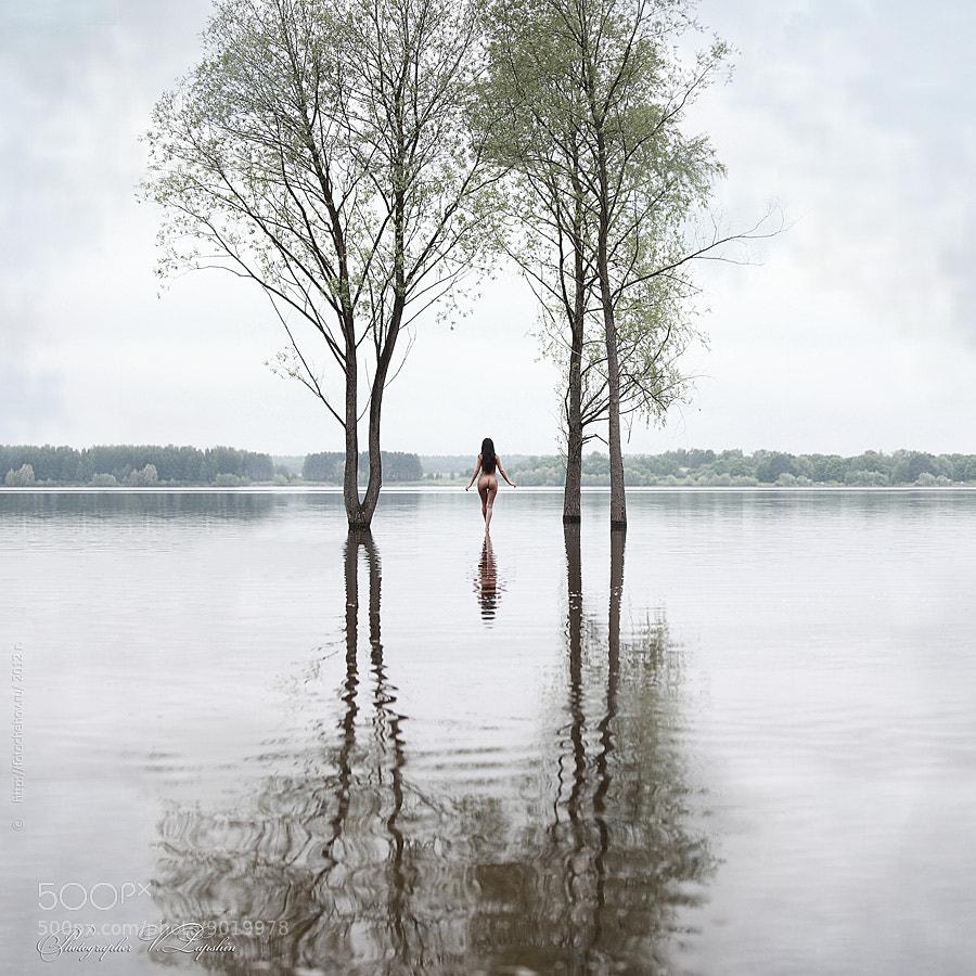 Photograph Untitled by Vladimir Lapshin on 500px