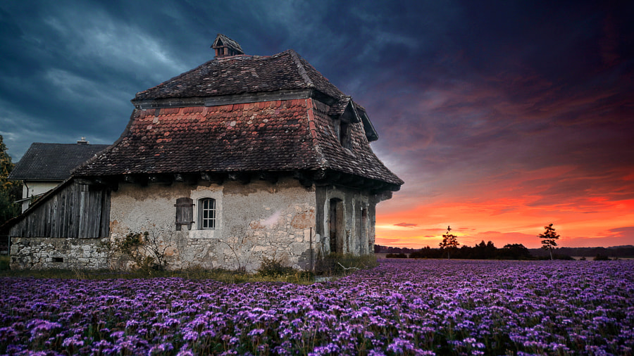 Photograph Old farmhouse by Ciro Santopietro on 500px