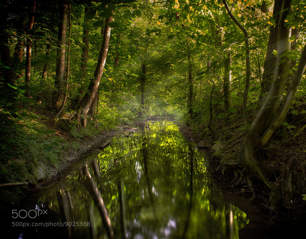 Photograph Downstream by Armin Barth on 500px