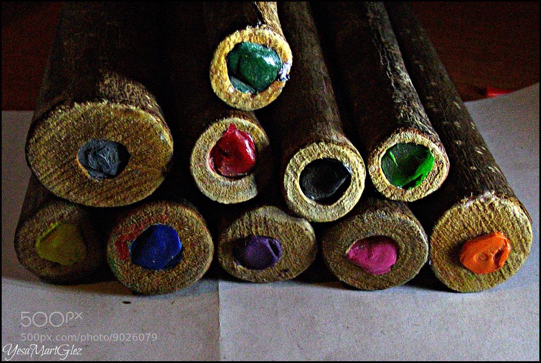 Photograph Tronquitos de Colores //  by Yesaluv MartGlez on 500px