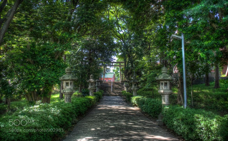 Photograph A Walk Towards the Shrine by David LaSpina on 500px