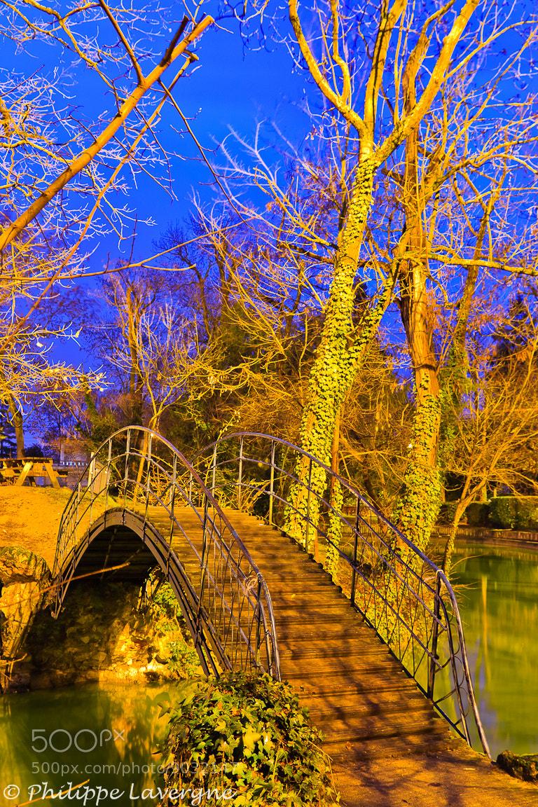 Photograph The little bridge by Philippe Lavergne on 500px