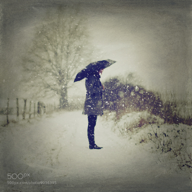 Photograph i know how it snows by photoflake . on 500px
