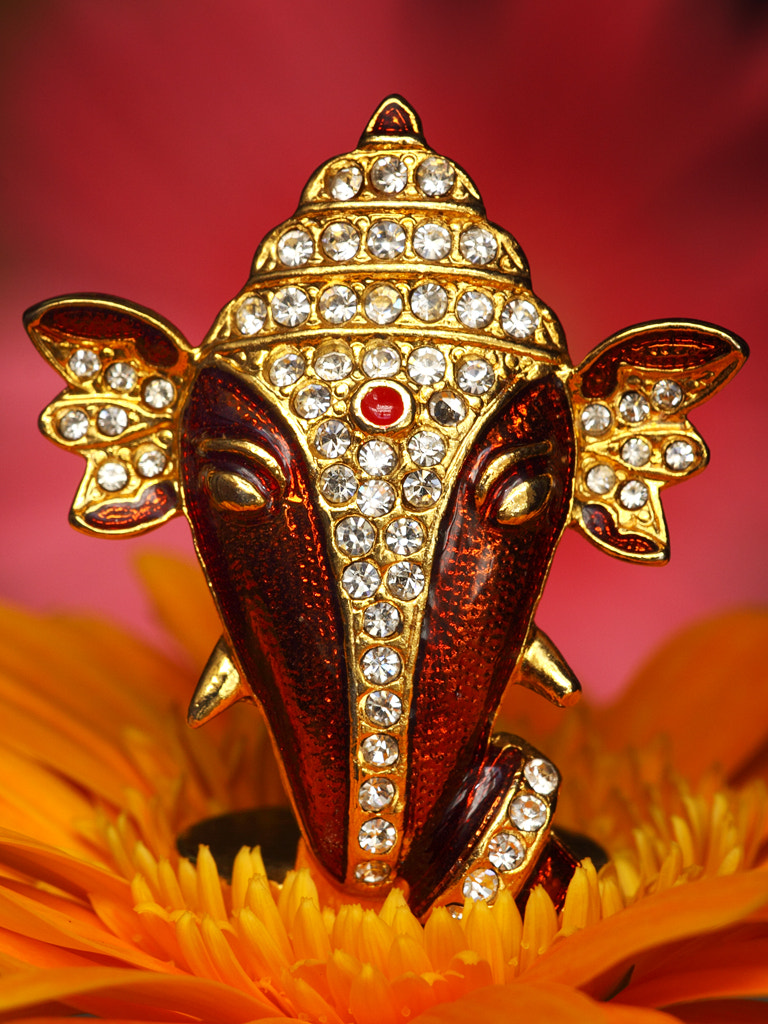 Photograph Jai Ganesh - Lord of Success by Srini Photography on 500px