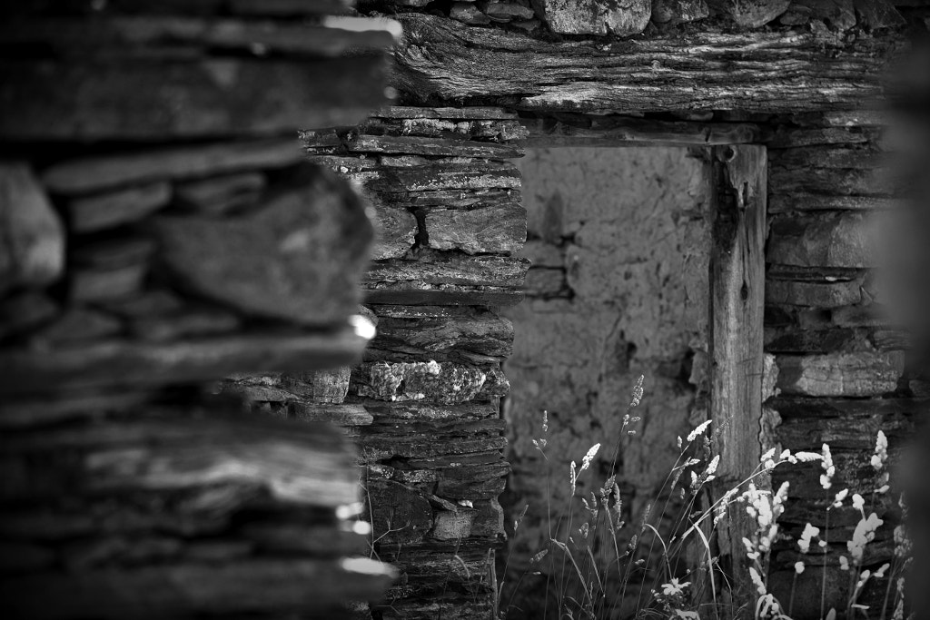 Photograph The Appeal of Rural Decay 13 by Joan Roca Febrer on 500px