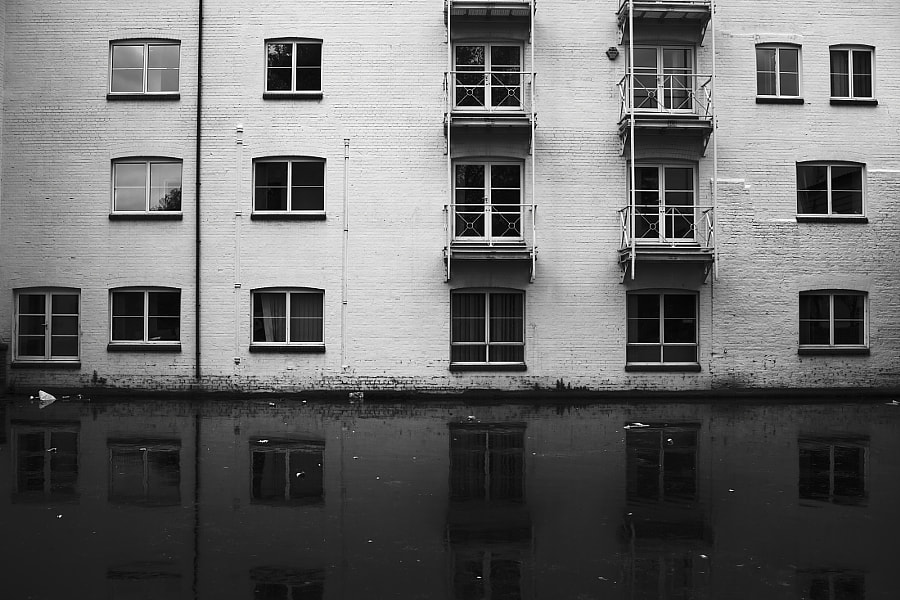 Black & White Windows