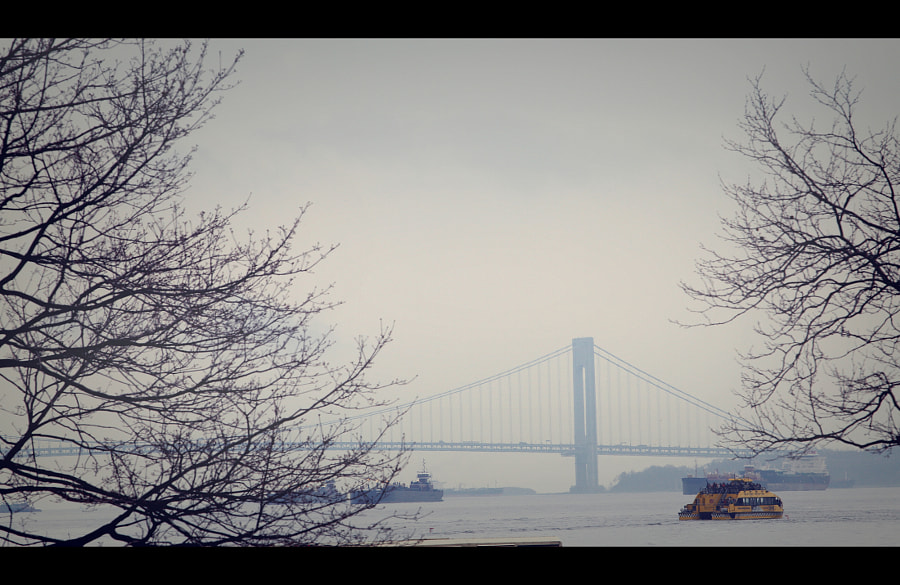 Bay Ridge Bridge