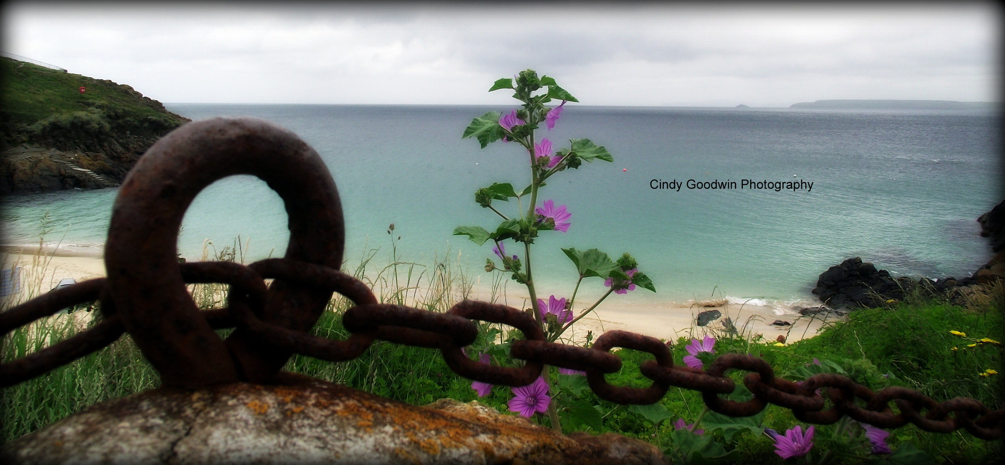 Photograph Flowerchain by Cindy Goodwin on 500px