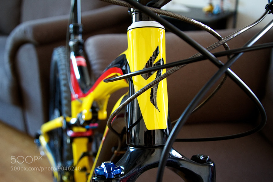 Photograph SJ Comp EVO Head Tube by Daniel Kennett on 500px