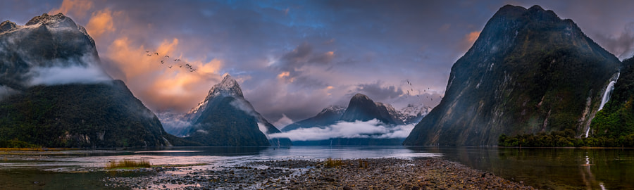 Photograph Majestic Milford by Michael Cockerill on 500px