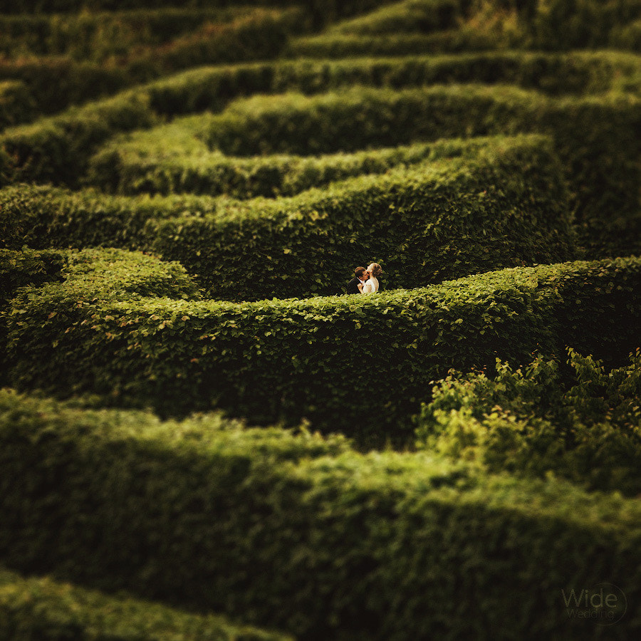 Photograph Labyrinthine by Dmitry Markov on 500px