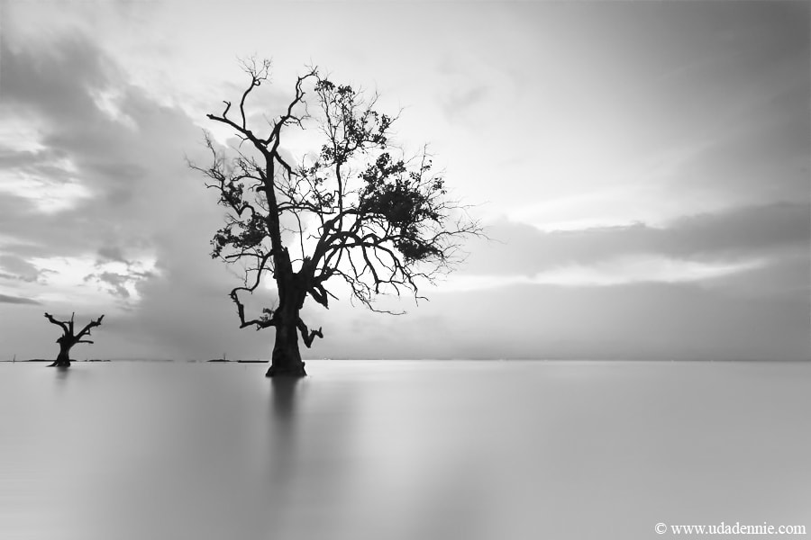 Photograph ♫ silent  by Uda Dennie on 500px