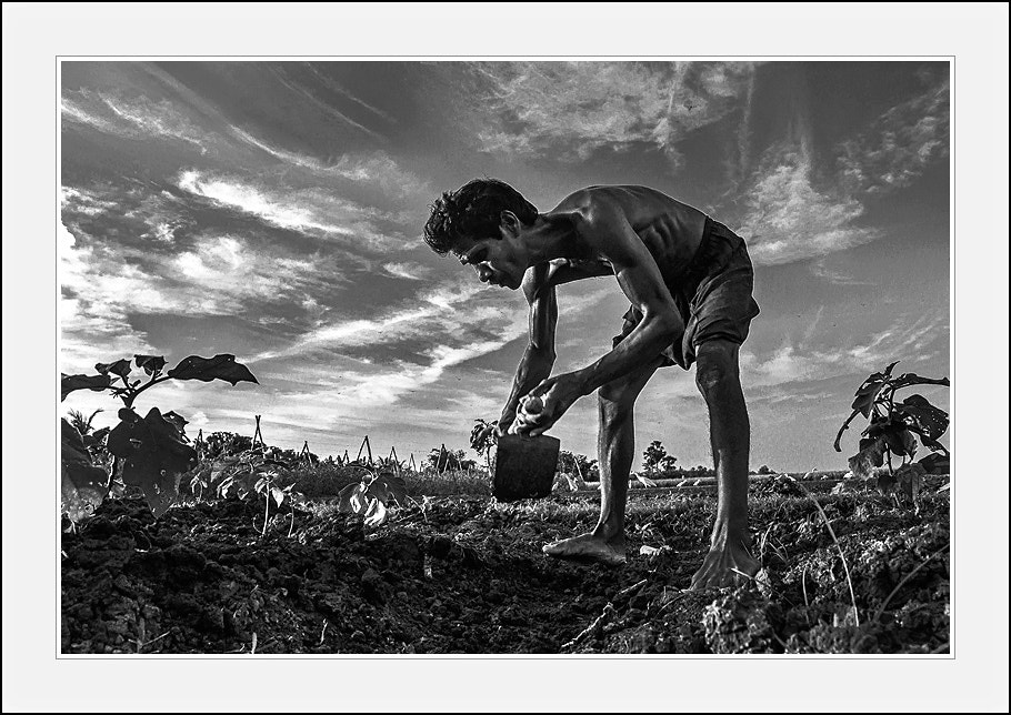Photograph The farmer by Ashoke Kumar Ghosh on 500px
