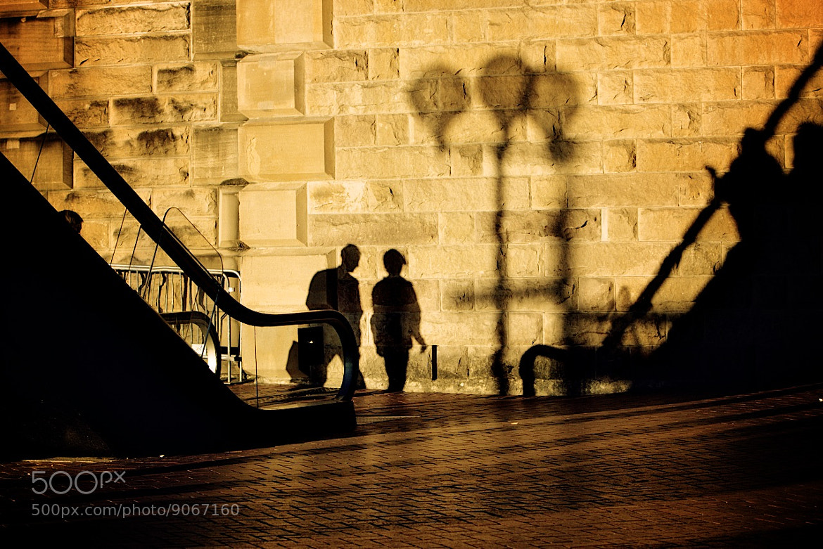 Photograph Shadow Passengers by Gaston Trussi on 500px