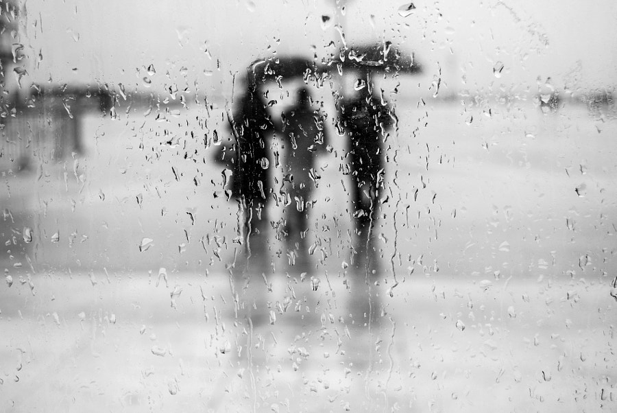 Photograph Rain parade by milena seita on 500px