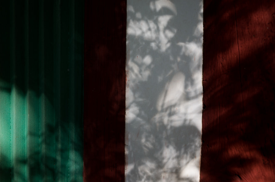 Red, Green, White and Shadow #7