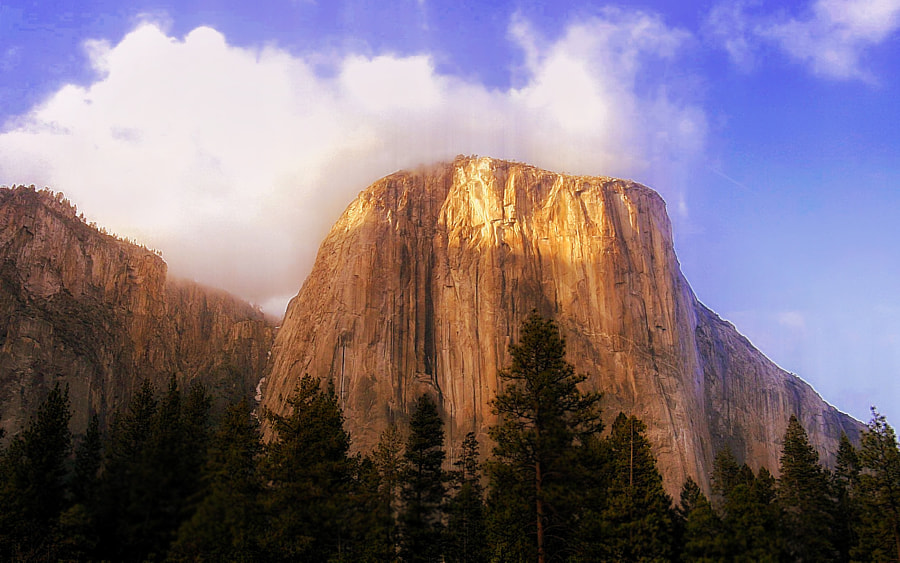 Photograph Light of the Captian, El Capitan Yosemite by Greg McLemore on 500px