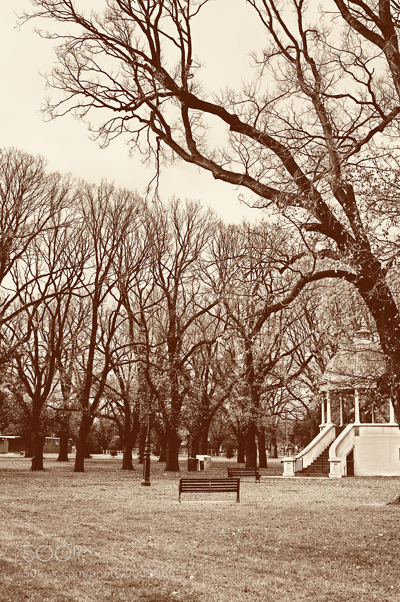 Photograph Park Fitzroy, Melbourne by Mark  on 500px