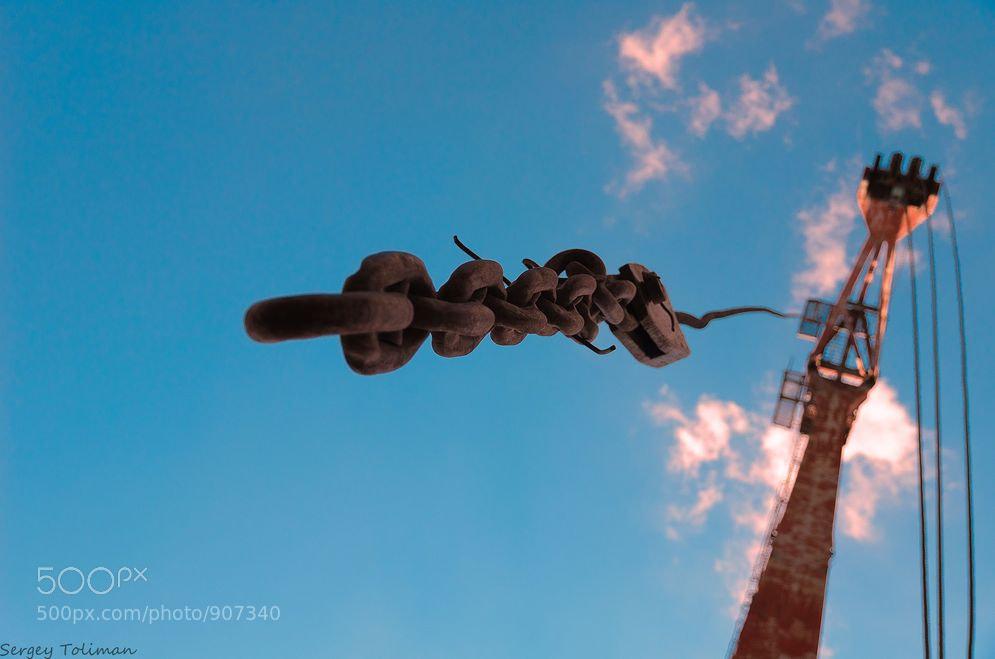 Photograph Giraffe by Sergey  Kuraev on 500px