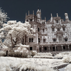 The Lords Manor by Nuno Dias (Dzian)) on 500px.com