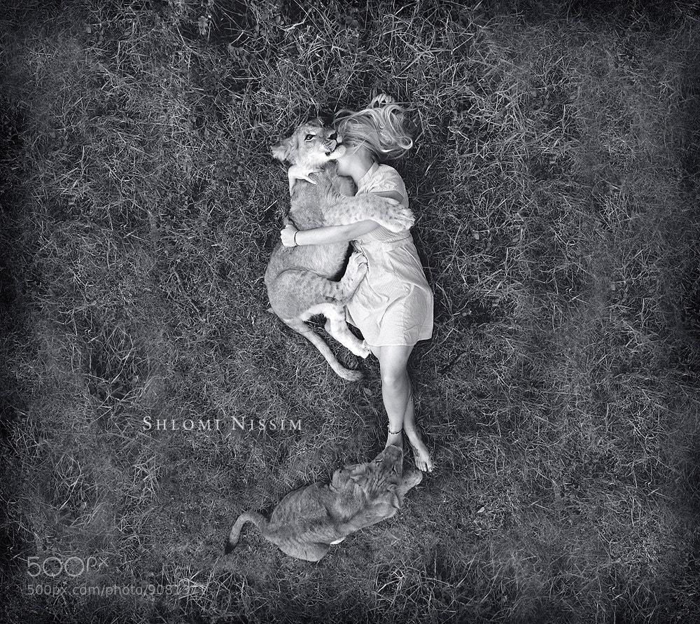 Photograph Dreams by shlomi nissim on 500px