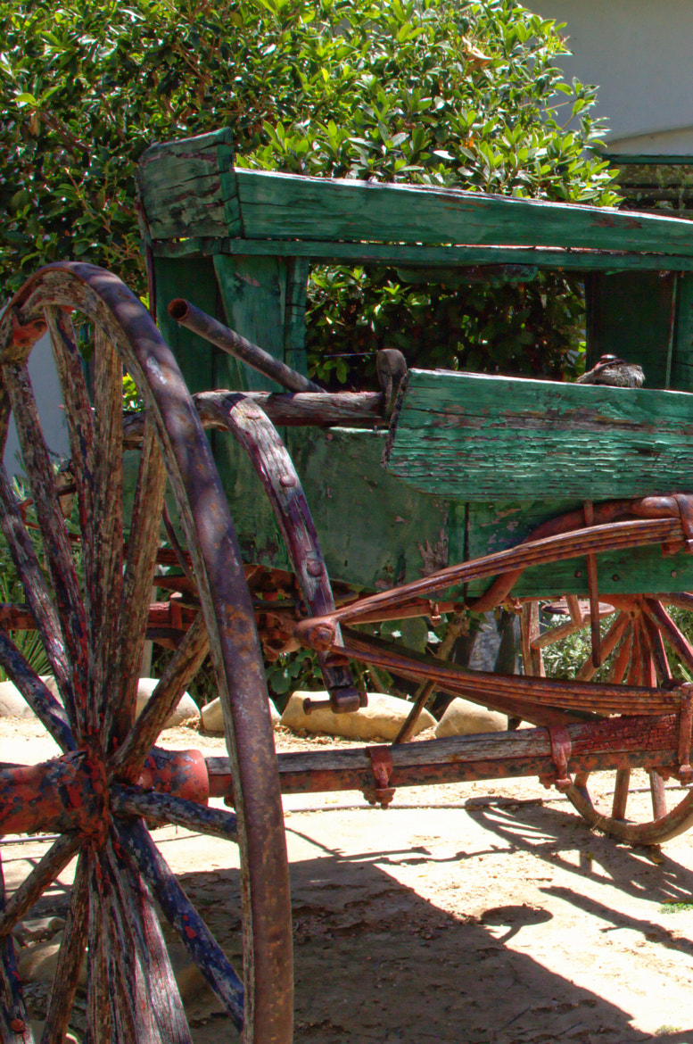 Photograph Old Cart in Garden by Mike  Hope on 500px