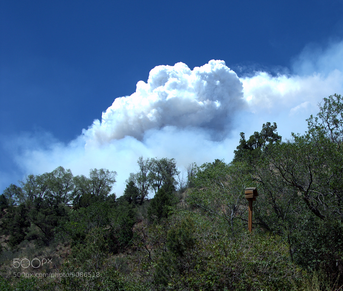 Photograph Waldo Canyon Fire by Clint Lewis on 500px