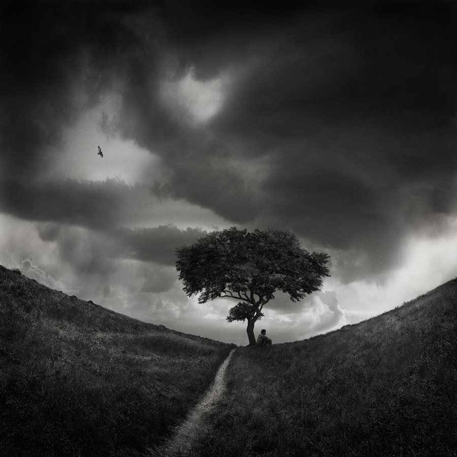 Calm before the Storm, автор — Sherry Akrami на 500px.com