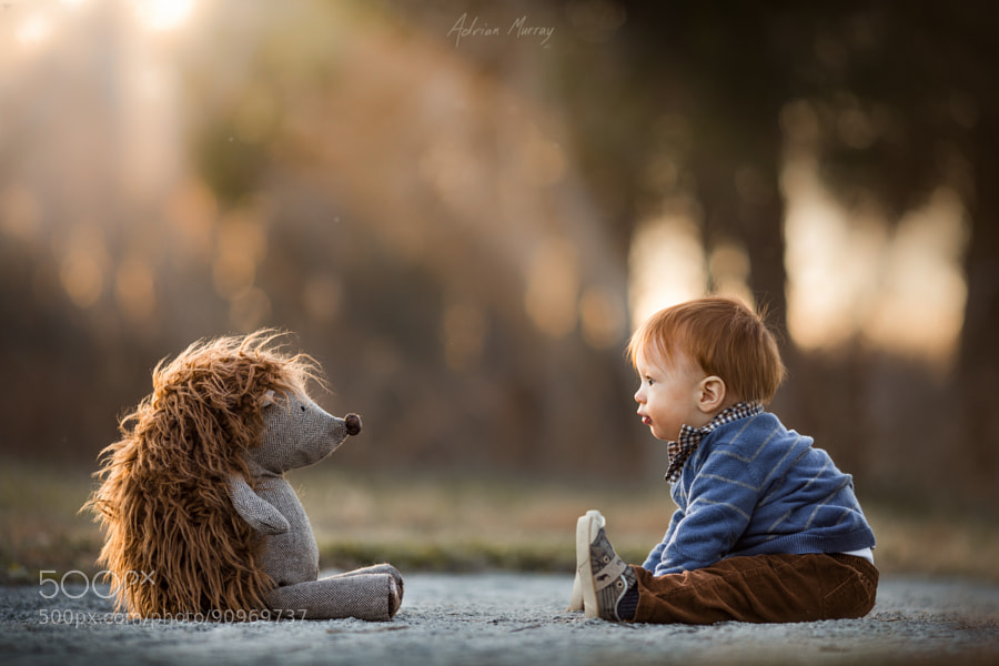 Photograph Discussion Amongst Giants by Adrian Murray on 500px