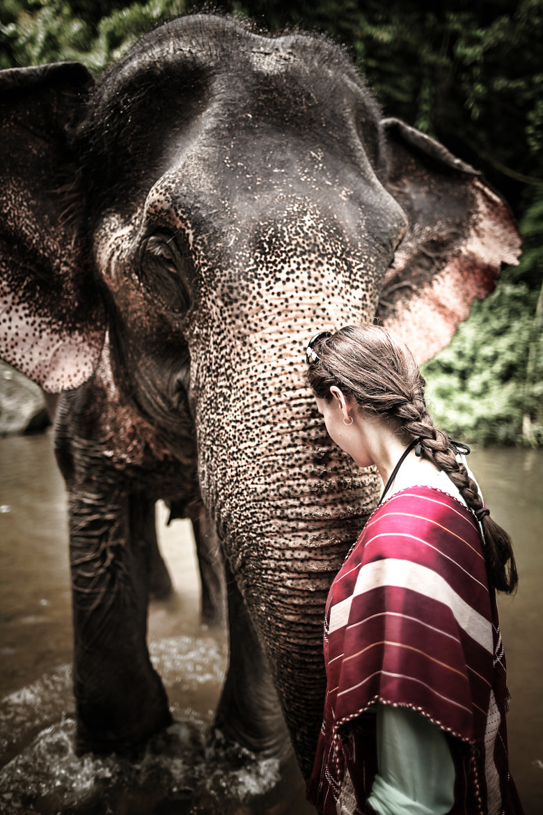 Photograph Respect by Oat Vaiyaboon on 500px