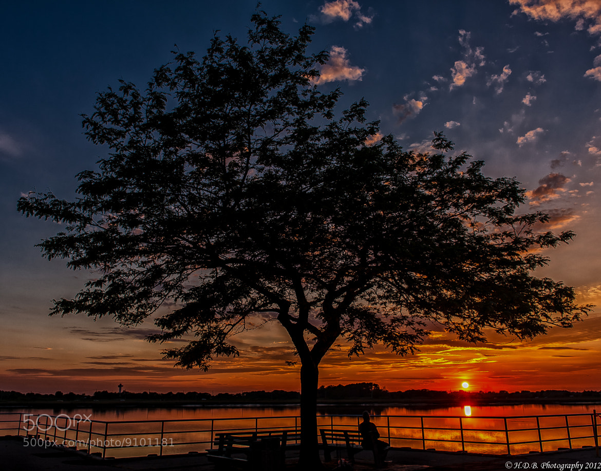 Photograph Watching The Sunset by Harold Begun on 500px