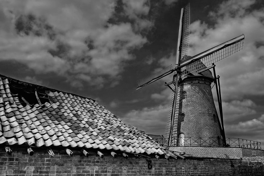Old Windmill in Belgian Limburg province near the border with The Netherlands.