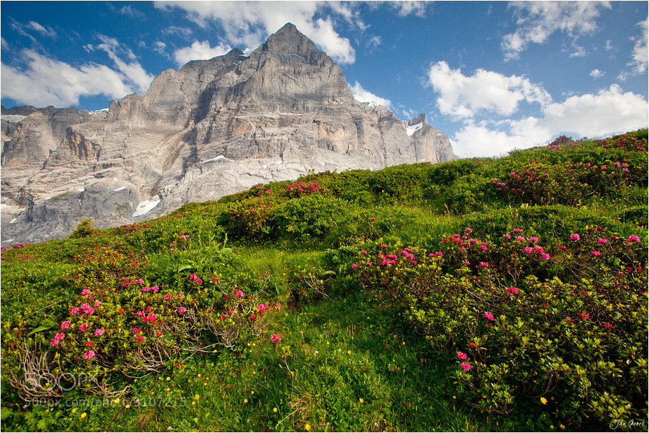 Photograph Summer in the Swiss Alps by Jan Geerk on 500px