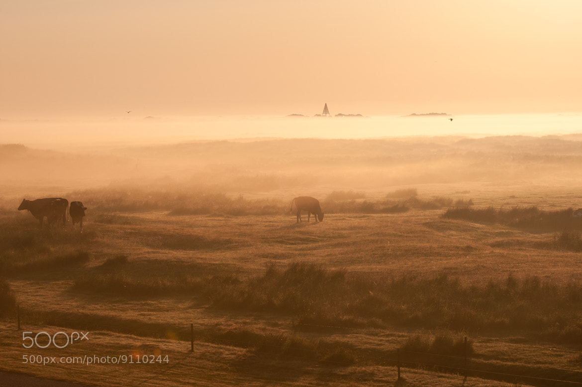 Photograph Schiermonnikoog by Lars Datema on 500px