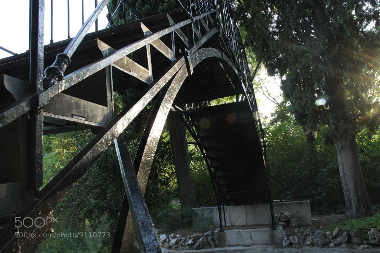 Photograph Puente del Capricho by Diana Martín Yuste on 500px