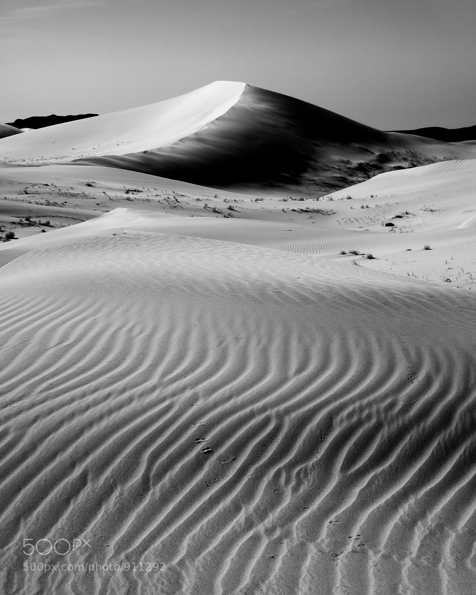 Photograph Morning in the Dunes by Jeff Sullivan on 500px
