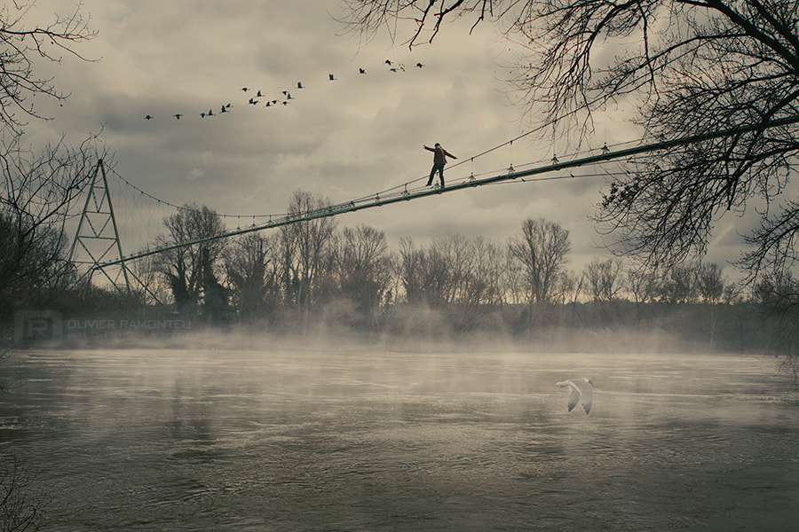 Photograph I wish I was a bird by Olivier RAMONTEU on 500px