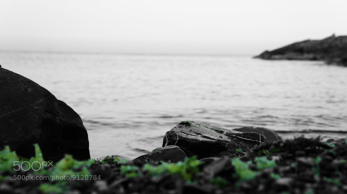 Photograph sea view by Hiwa  on 500px