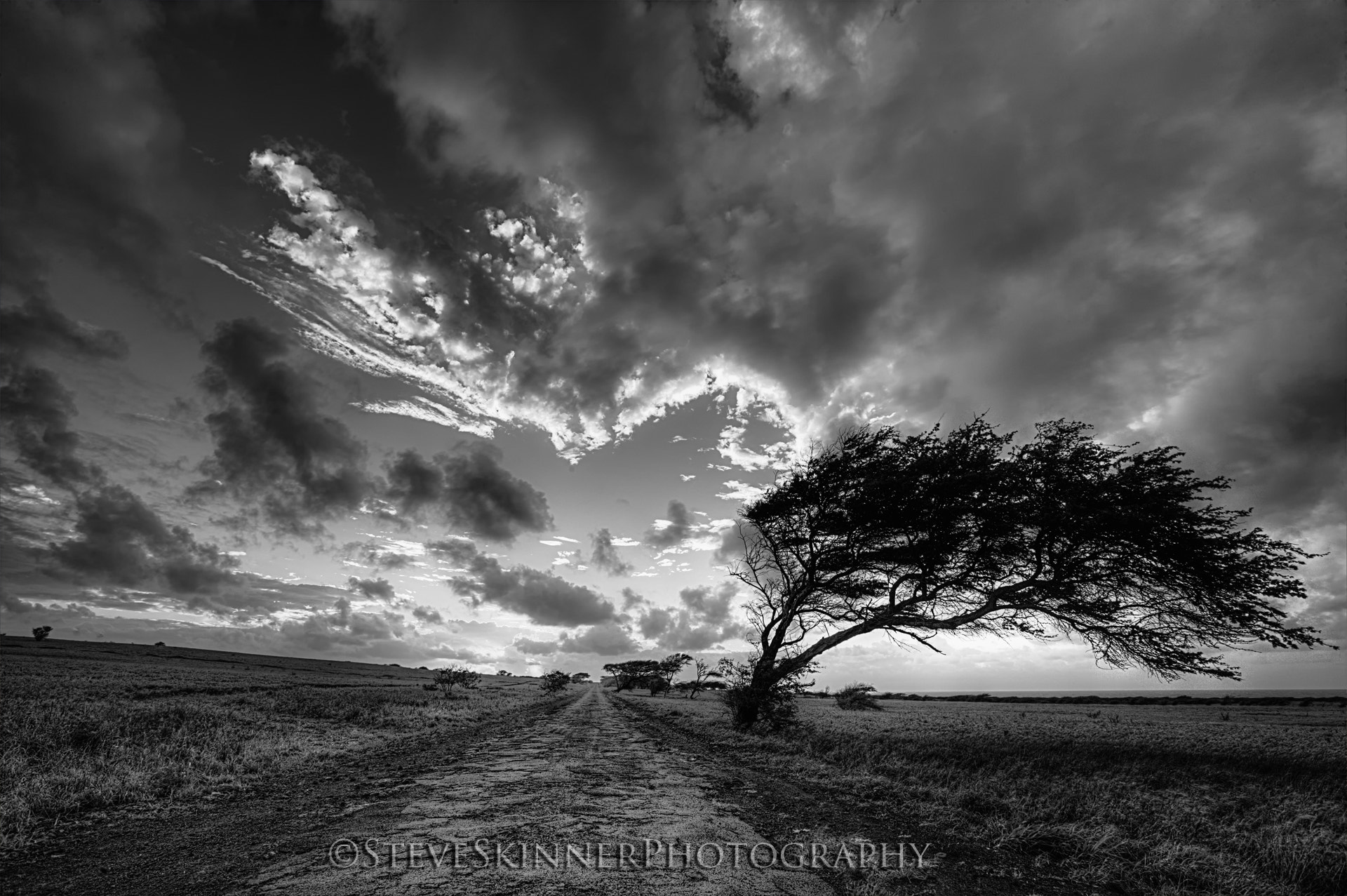 Photograph Forbidden Road Mono - Big Island by Steve Skinner on 500px